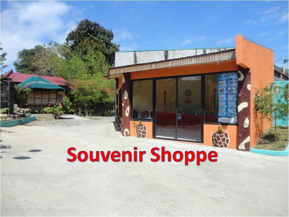 Souvenir Shoppe.JPG?1366610894968